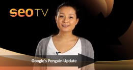 Google Penguin Update, How Will It Affect My Websites Ranking & Traffic?